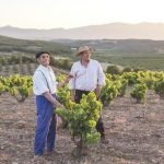 Farmers working the vineyards